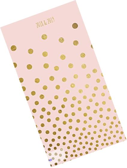2018-2019 Pink & Gold Dots 2-Year Pocket Planner